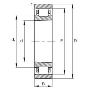 FAG Zylinderrollenlager - N1013-K-M1-SP